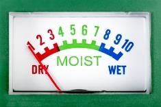 Hardwood moisture meter